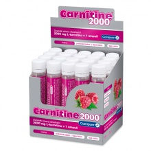 WELLNESS FOOD KARNITIN CARNITINE 2000 MALINA